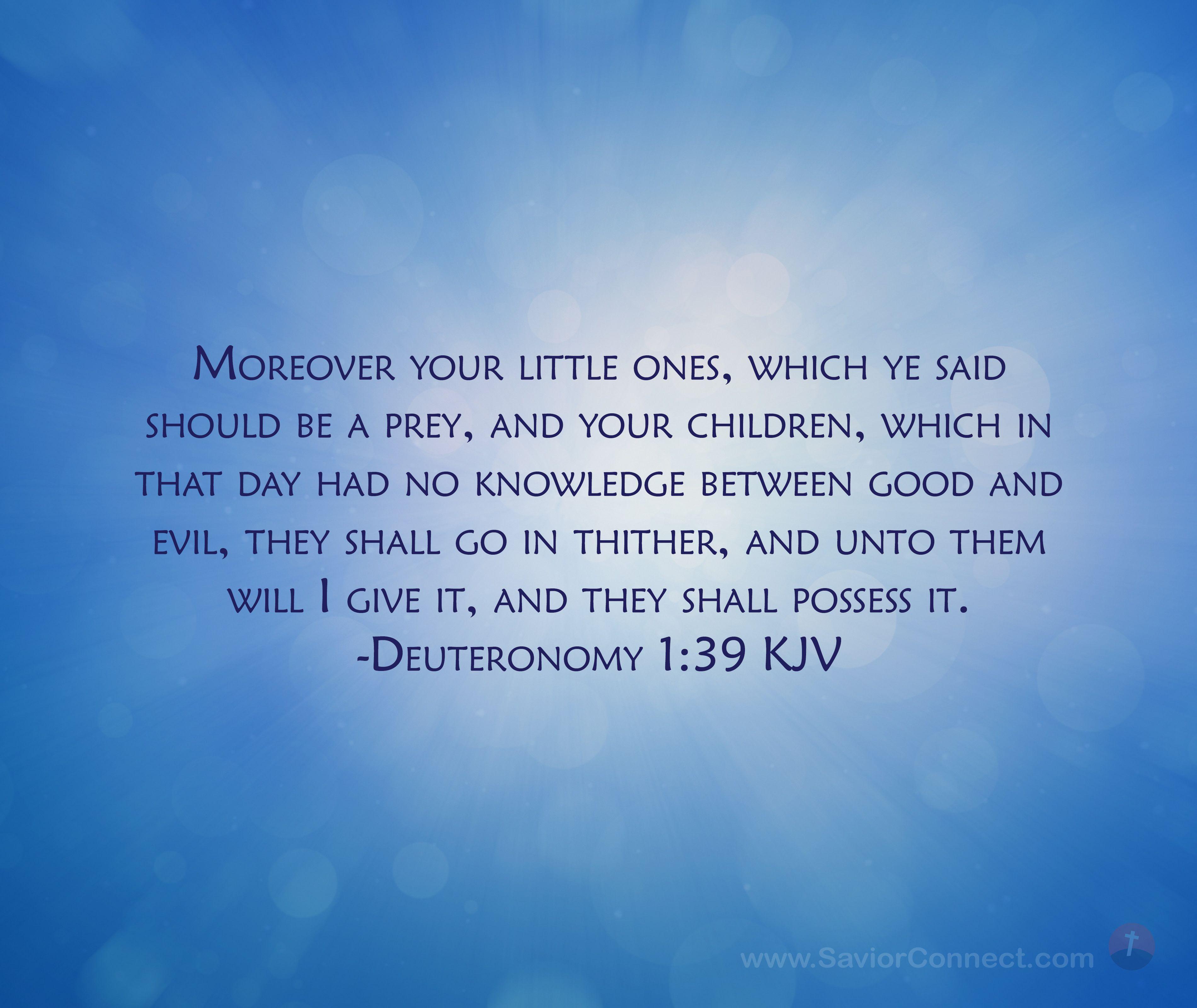 Deuteronomy 1:39 King James Version in 2020 | Scripture images, Kjv, King james version