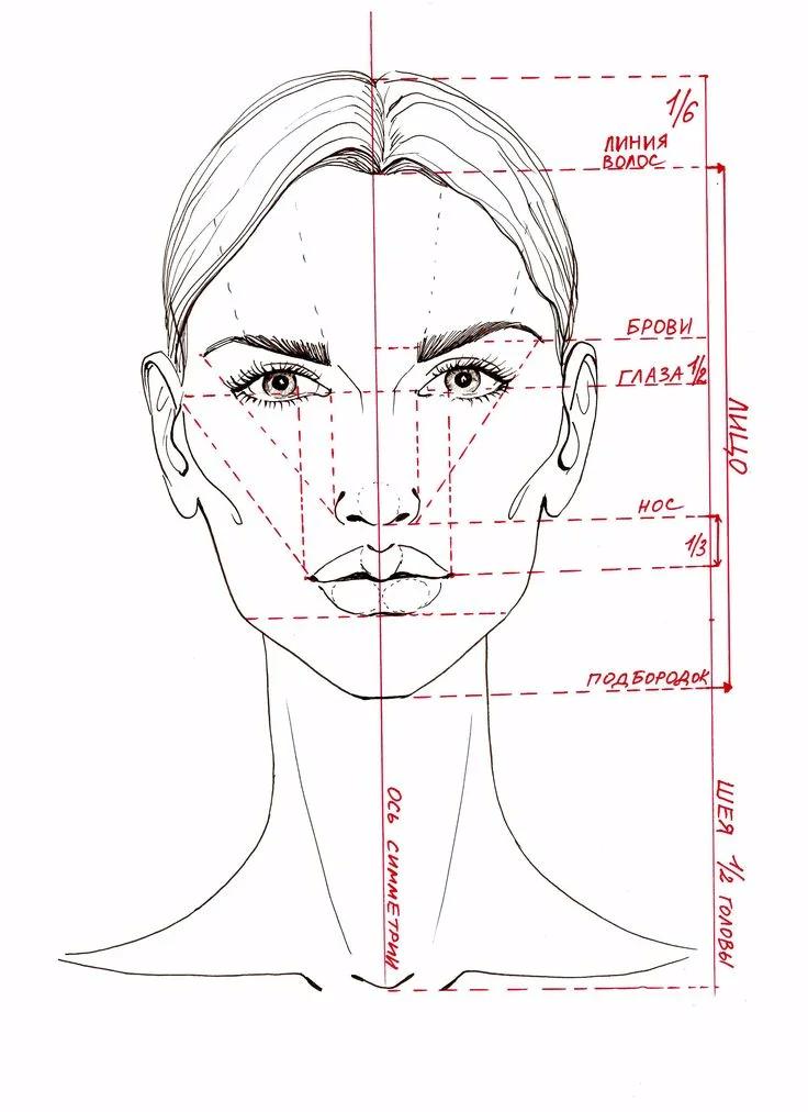 Рисовать лицо — проще простого!