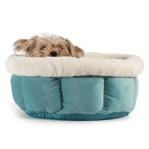 Petsmart Dog Beds >> Best Friends By Sheri Cuddle Cup Pet Bed Dog House Bed