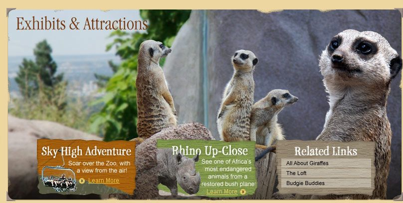 Animals - CMZoo | Cheyenne mountain zoo, Cheyenne mountain ...