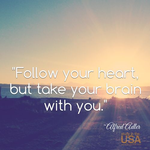 Follow Heart Or Mind Quotes: Follow Your Heart, But Take Your Brain With You. ~Alfred