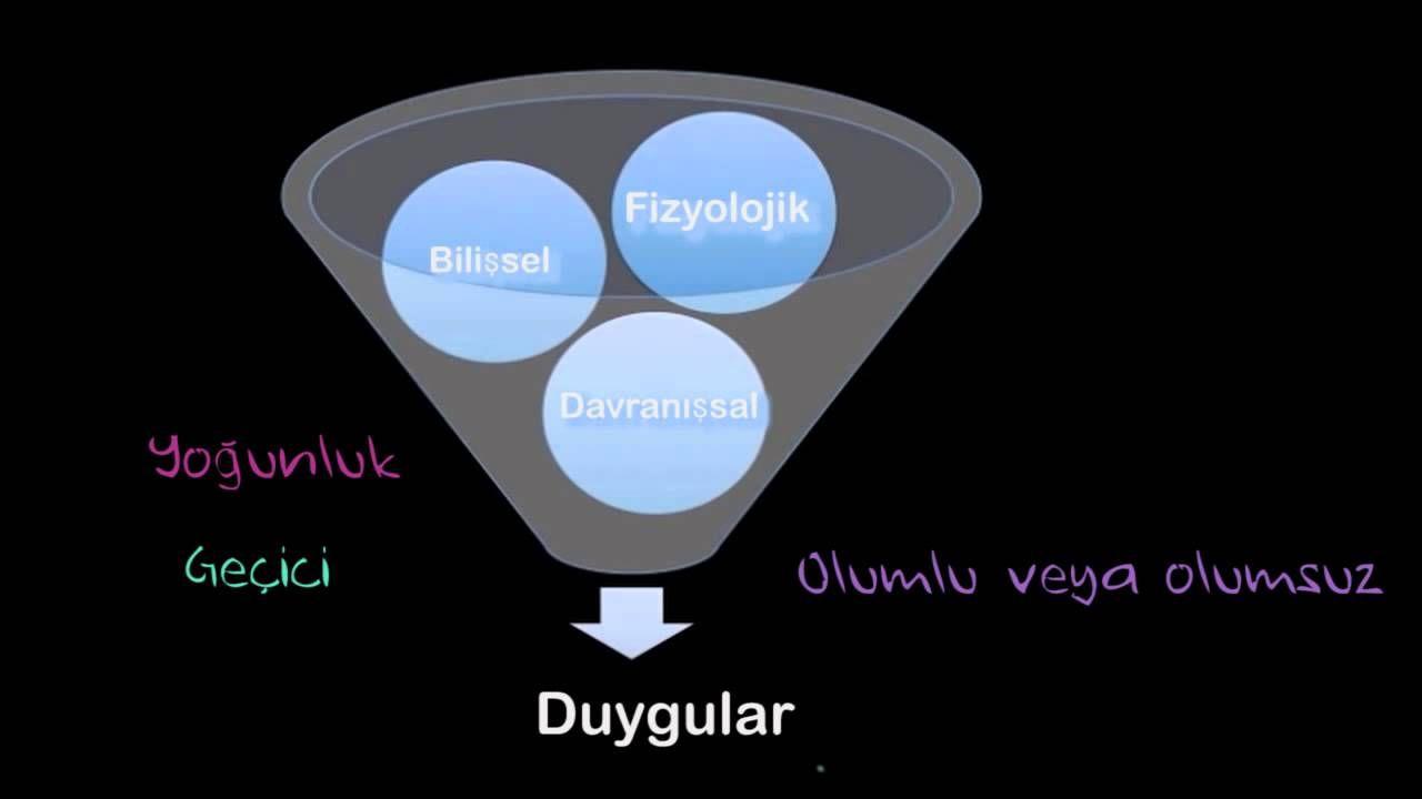 Duygunun Üç Bileşeni ve Evrensel Duygular