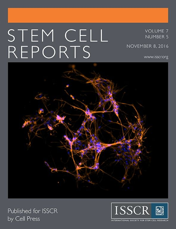 image result for stem cell report cover page