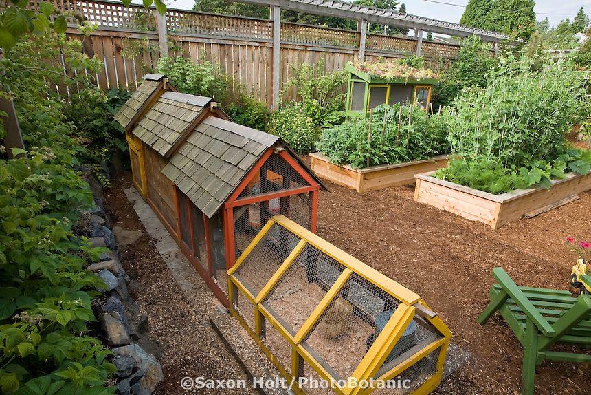 21 Positively Dreamy Chicken Coops | City farm, Backyard ...