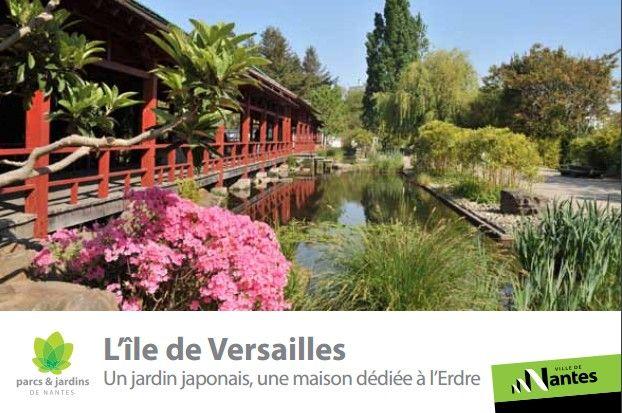 Maj Hanami Ou Admirer La Floraison Des Sakura En France Avec