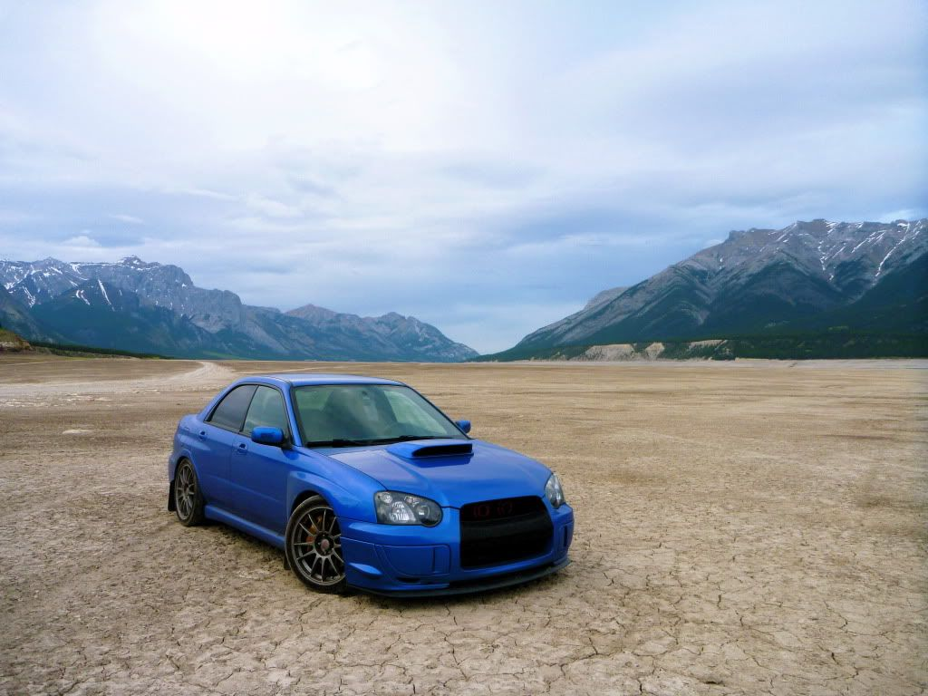 sti rally wing Re The Official 0407 World Rally Blue