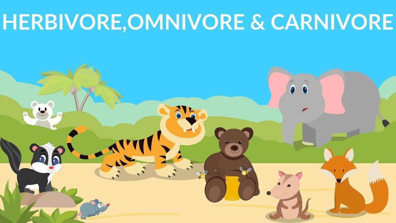 Herbivores Carnivores Omnivores Types Of Animals Youtube Carnivores Herbivores Omnivores Herbivore And Carnivore Herbivores
