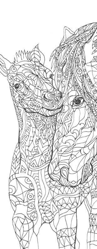 Horses Coloring book 44 Page For Download Printable Adult Coloring ...