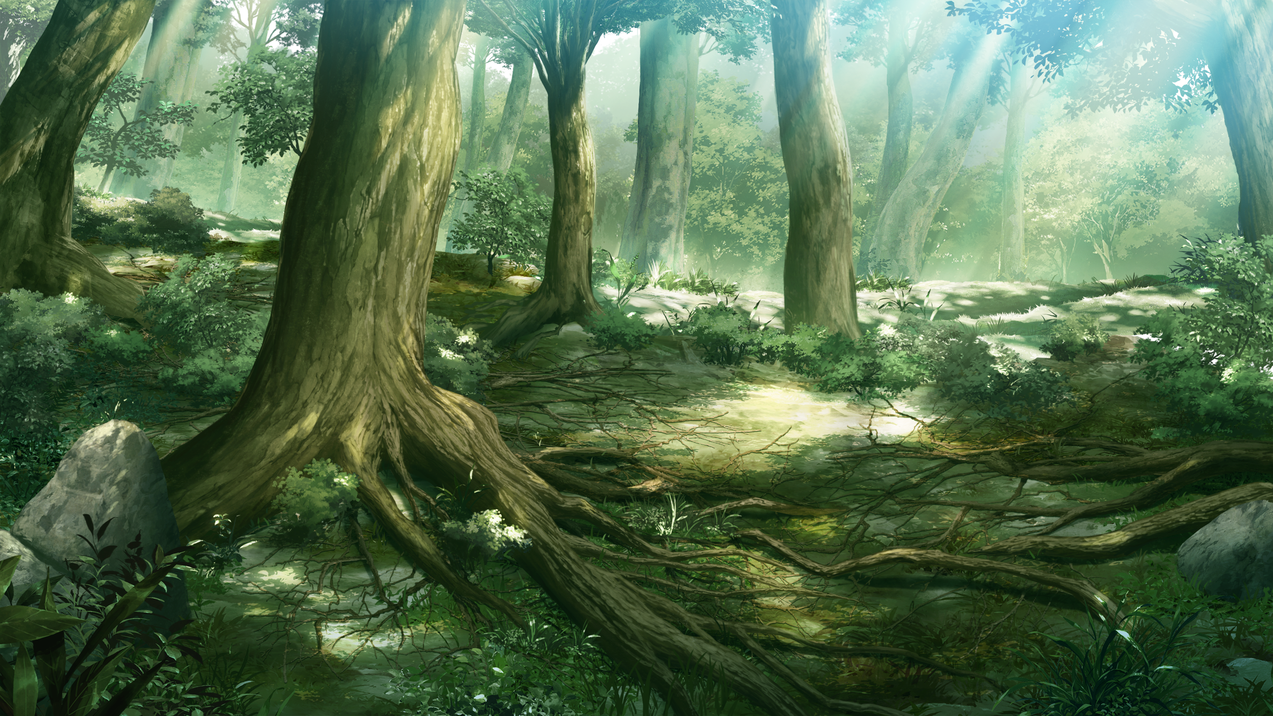 Nature Forest Scenic Game Cg Grisaia No Kajitsu Fresh New Hd Wallpaper Png 2560 1440 Forest Scenery Anime Scenery Scenery Wallpaper
