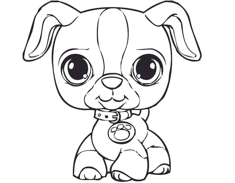 LPS, Littlest Pet Shop coloring | Coloring Pages | Pinterest | Pet ...