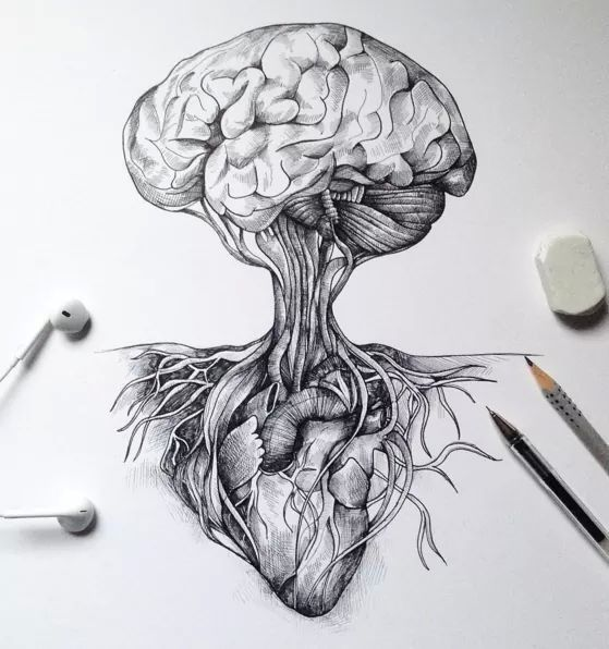 Heart And Mind Art Illustrations Pinterest Tattoo