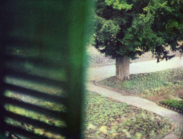 Bernard Plossu Jardin vu de la chambre de Claude Monet, Giverny Hiver 2010