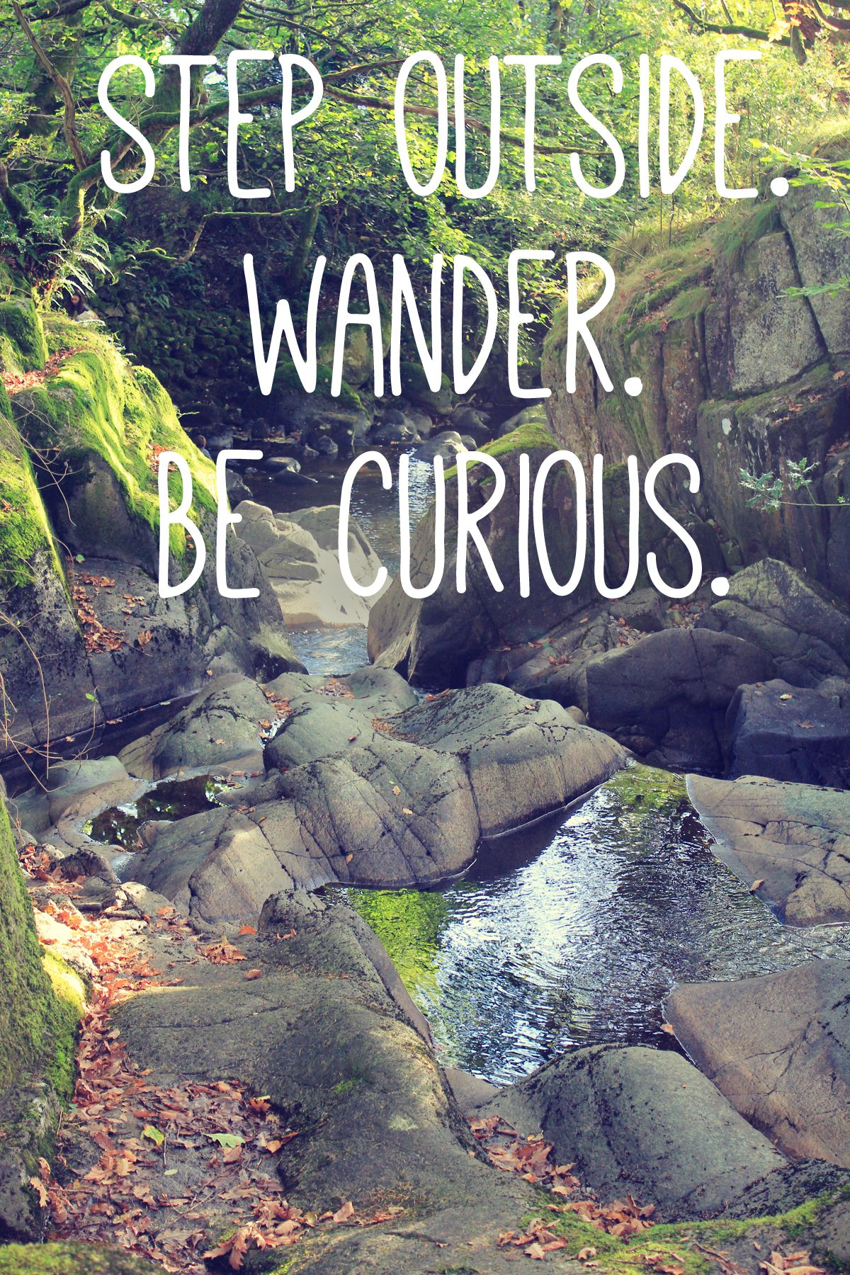 Wisdom · Step Outside. Wander. Be Curious. #outdoors #nature #inspiration # Quote