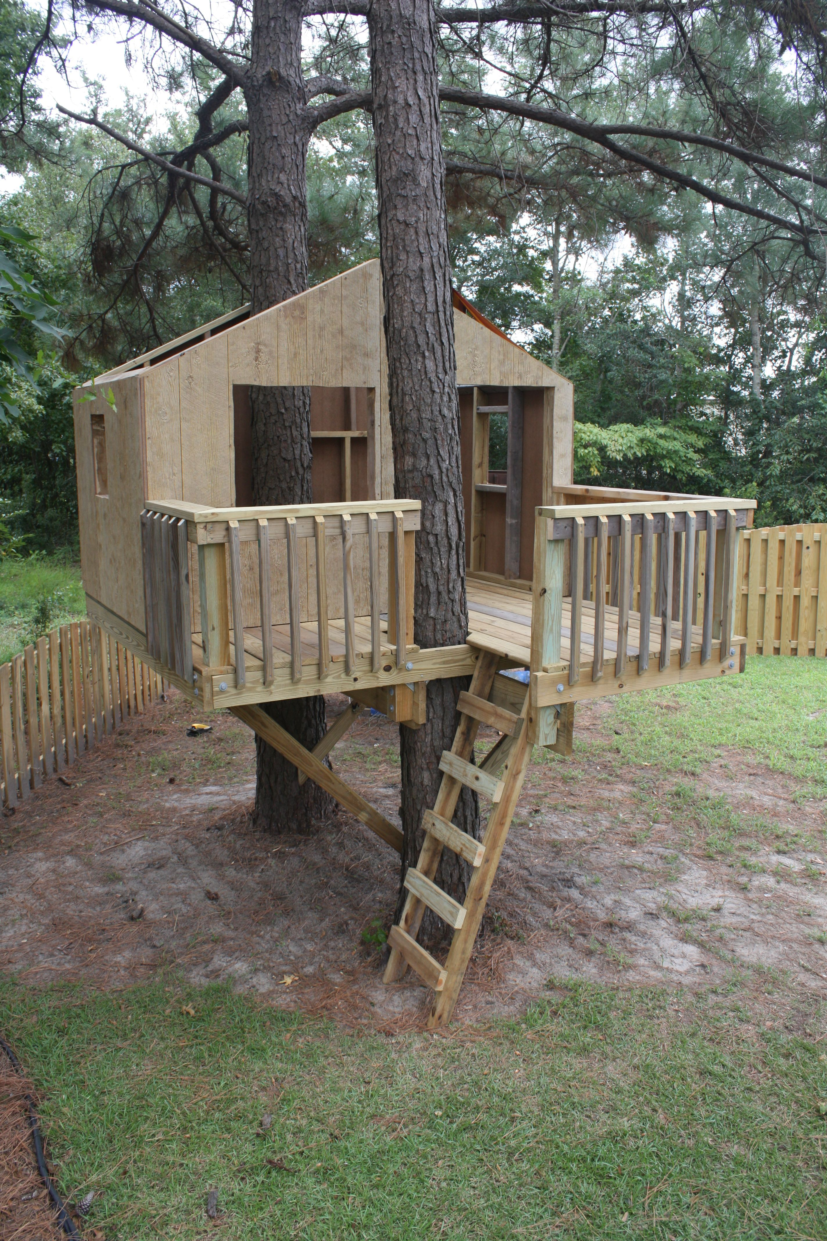 Safe to play in, still needs a roof and stain. | Tree House Projects Houses Close To Safe Plant Trees on unknown plants, philadelphia plants, sahara plants,