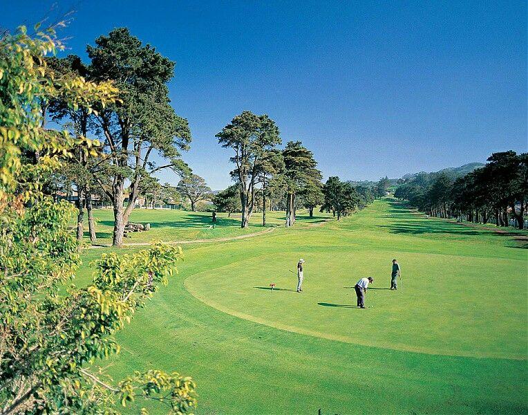 37+ Bajo par golf ideas