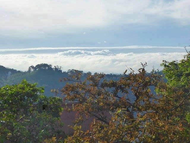 Windermere  a jewel in the Indian plantation crown https://t.co/qRxecQWHxg #garden #fling https://t.co/iS4MY43U0J (via Twitter http://twitter.com/TIMBERPROUK/status/826003294157996032) Windermere  a jewel in the Indian plantation crown https://t.co/qRxecQWHxg #garden #fling https://t.co/iS4MY43U0J