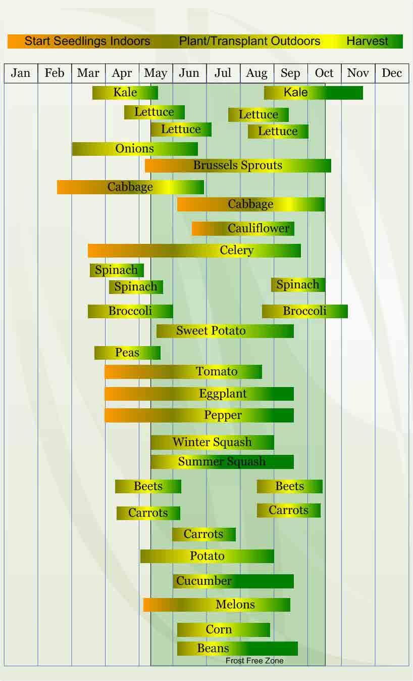 Zone planting guide also vegetable chart for here is what my rh pinterest