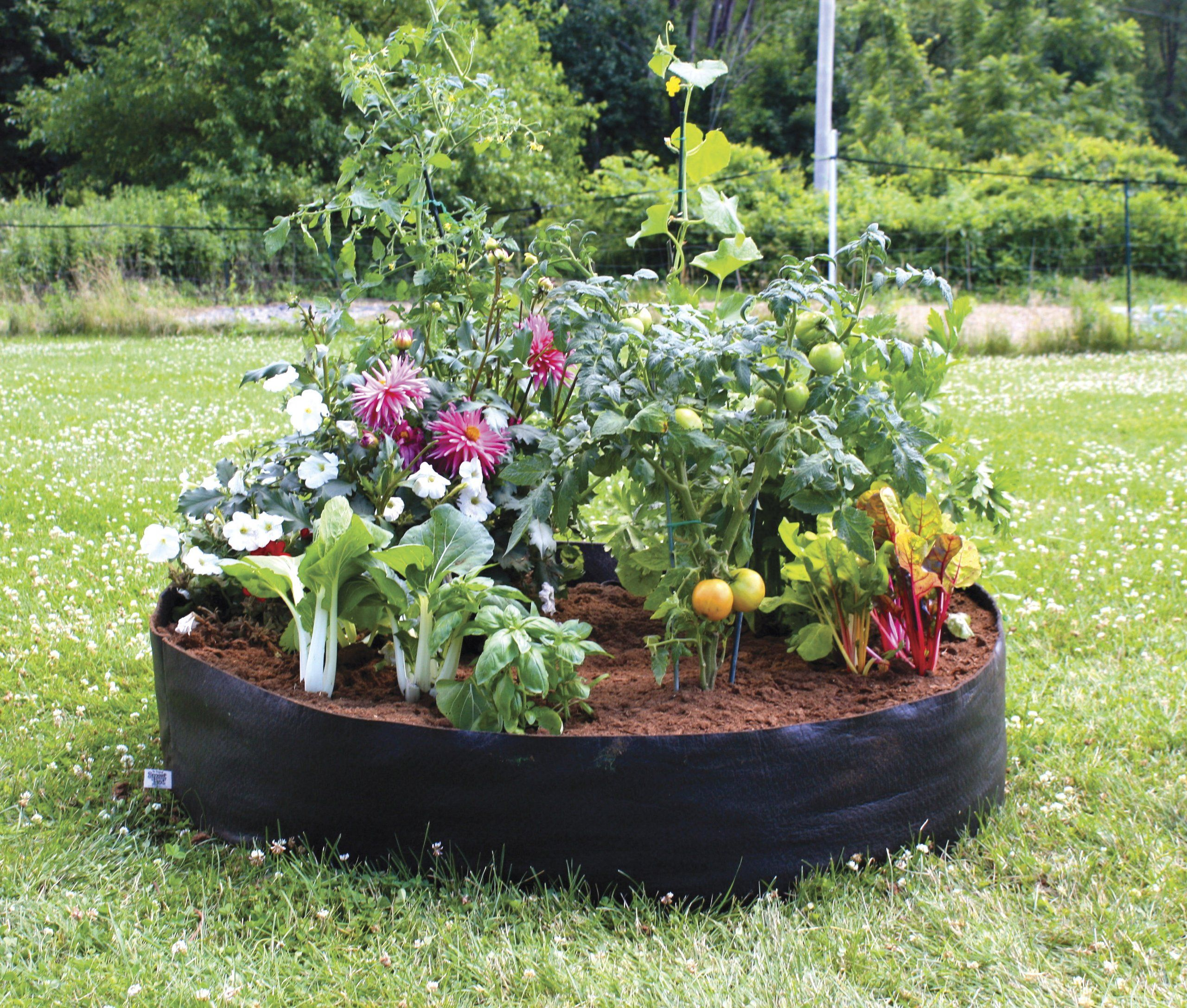Amazon.com : Smart Pots Big Bag Bed Fabric Raised Bed : Raised Garden Kits