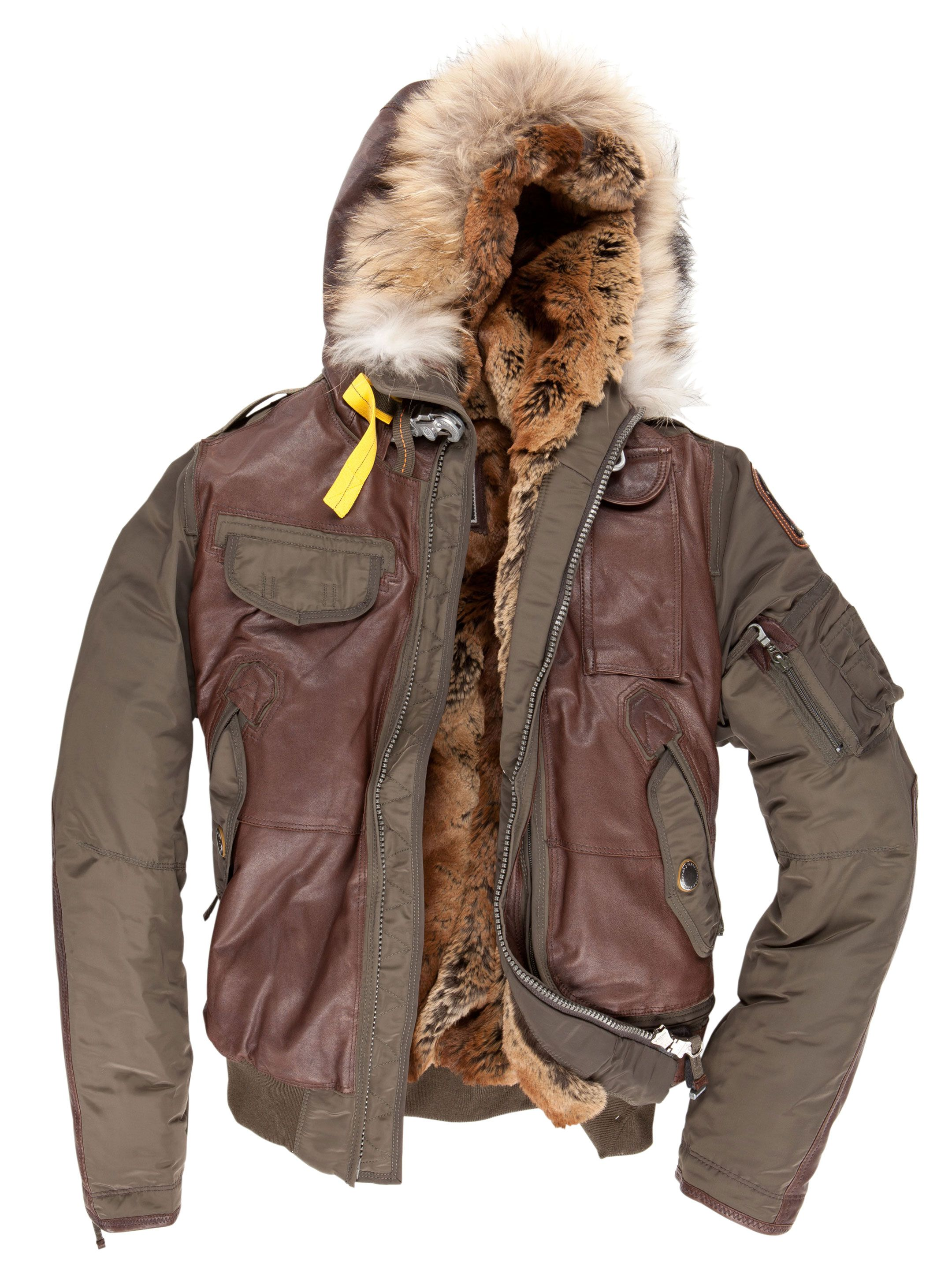 parajumpers special edition grizzly