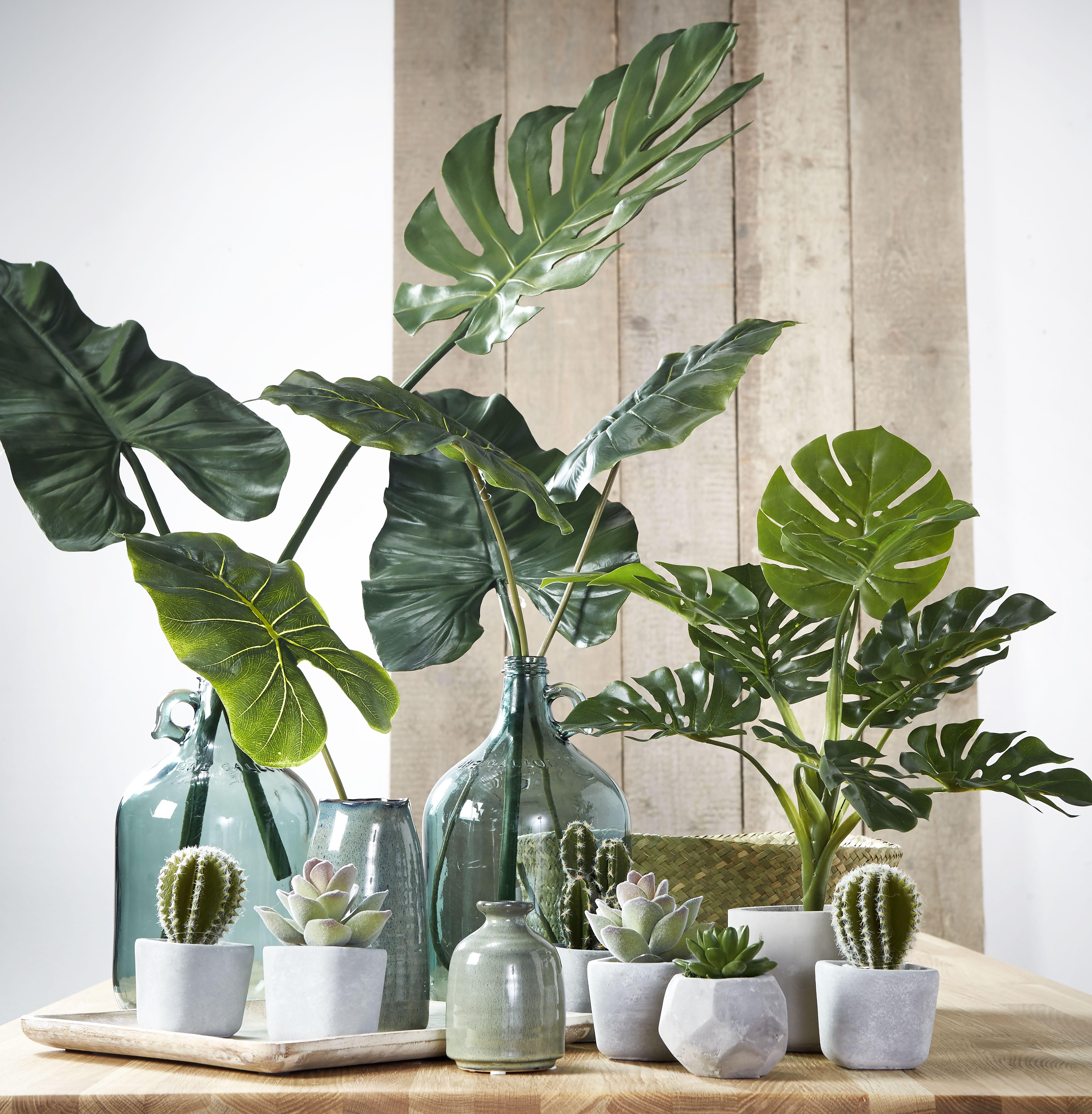 Leuk, maar wel met echte planten   Interieur & kunst   Pinterest ...