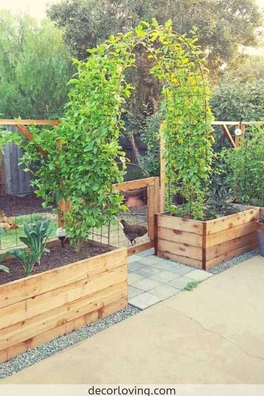 18 فكرة رائعة لتصميم الحديقة النباتية الخلفية للمبتدئين Backyard Vegetable Gardens Small Cottage Garden Ideas Vegetable Garden Raised Beds