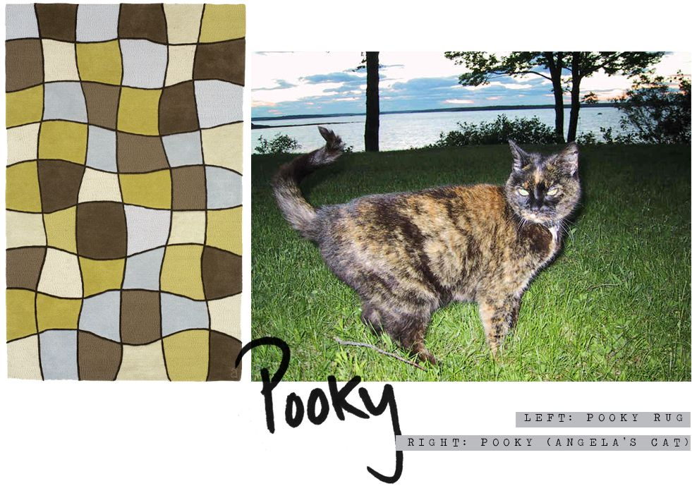 Pooky was a dream cat. She was born when I was 19 1/2 and we were together until she was 19 1/2. We travelled together, went through college together, took long walks on the beach and in the woods. #rug #color #pattern