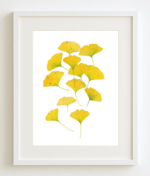 Ginkgo Leaves, Gold Yellow Wall Art, Botanic Art, Gold Home Decor ...