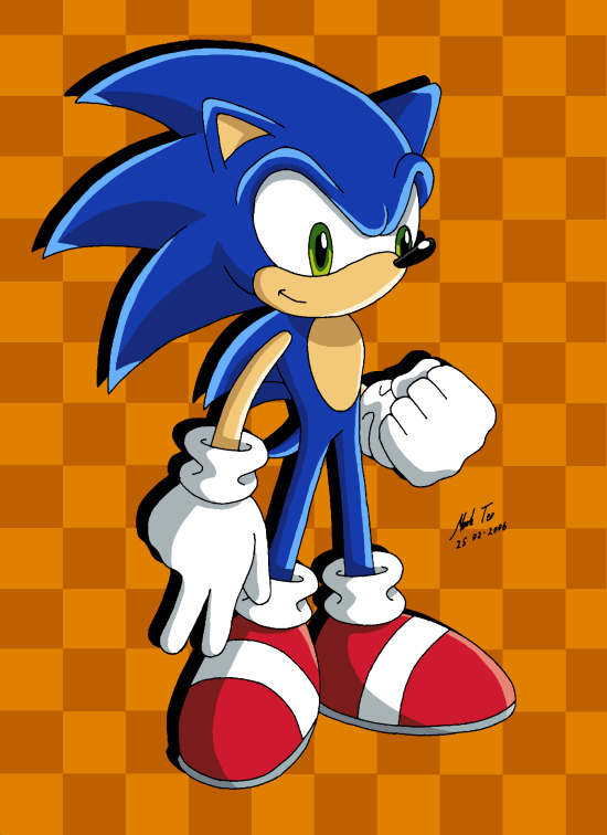 Sonic The Hedgehog With A Green Hill Zone Inspired Background Sonic The Hedgehog Sonic Hedgehog