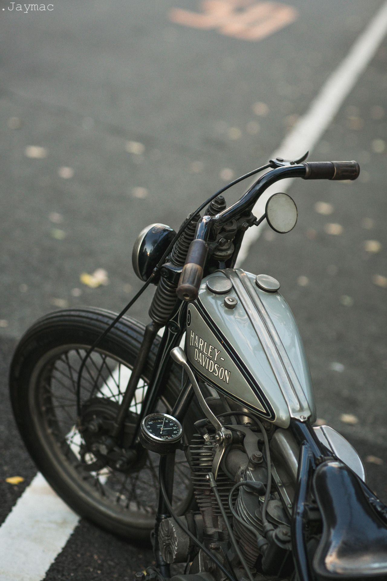 Harley Ace Nude Photos 64