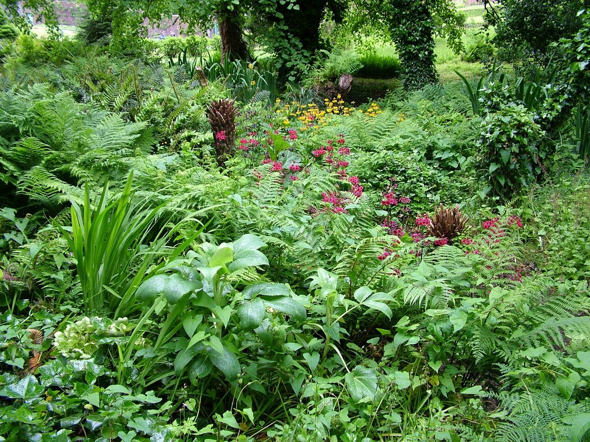 Shade Plants For Victorian Garden | Setting That Divides The Kitchen Garden  From The Flower Garden