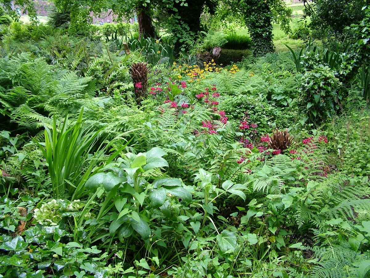 Shade Plants For Victorian Garden   Setting That Divides The Kitchen Garden  From The Flower Garden