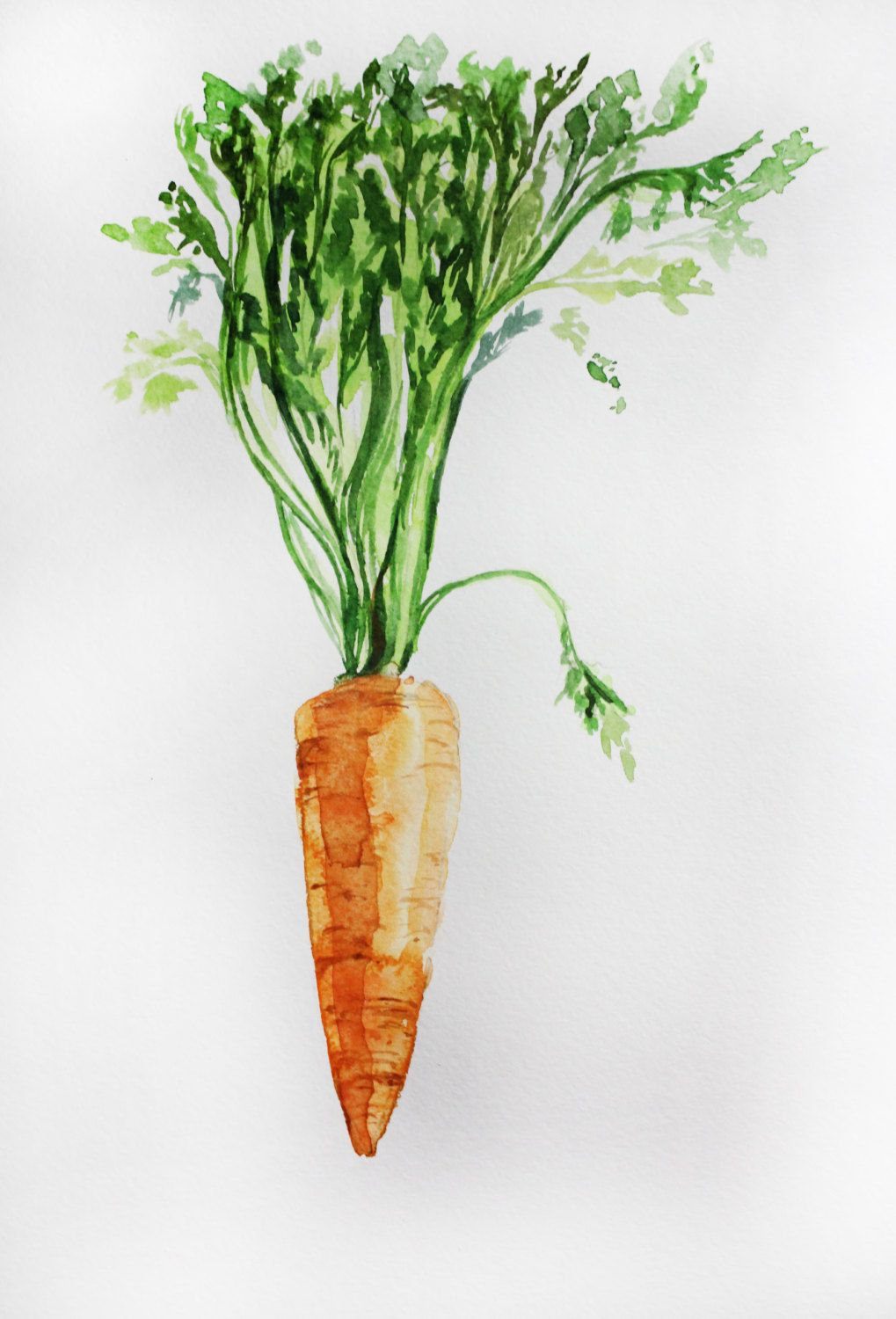 Original Watercolor Painting Carrot Organic Art Vegetables