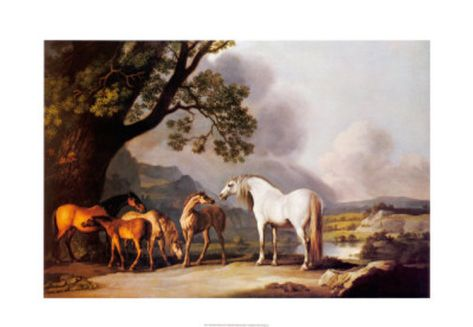 Grey Stallion with Mares and Foals Print by George Stubbs at Art.com