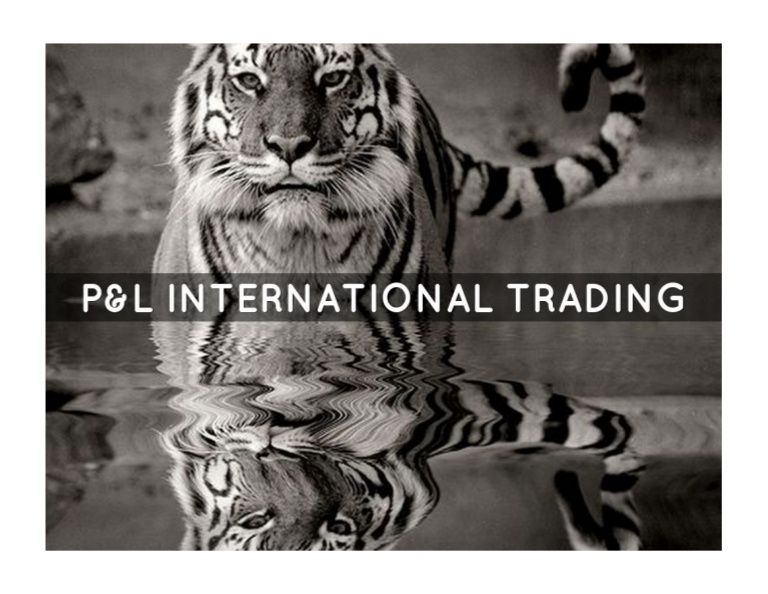 P&L International Trading by P&L International Trading via slideshare