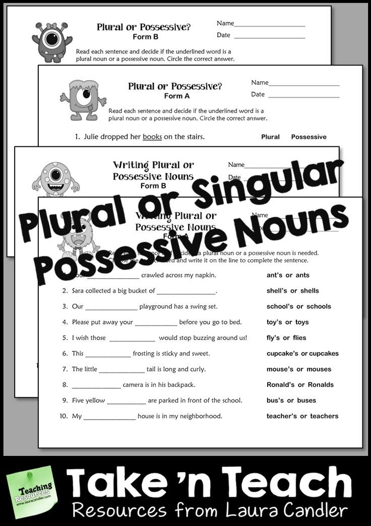 Plural or Singular Possessive Nouns Worksheets for Practice or ...