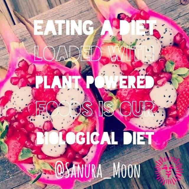Sanura Moon Lifestyle ~ Teach. Share. Love ...