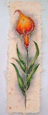 Valda Fitzpatrick Cala lily absolutearts.com