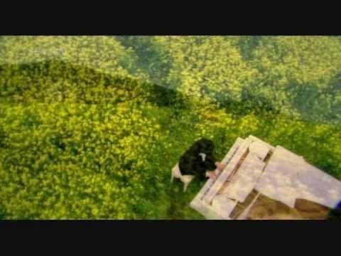 Vals de primavera hermoso secreto for Jardin secreto dorama sub espanol
