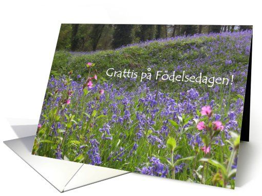 Bluebells Birthday Card Swedish Greeting Up To 350 Httpwww
