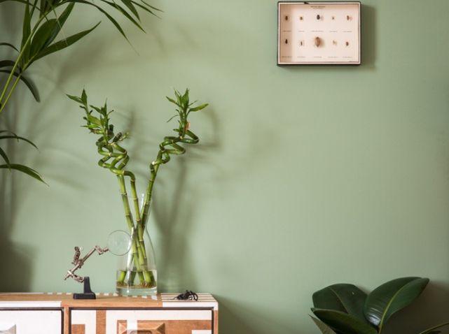 Mur vert d eau deco chambre pinterest mur vert mur - Chambre mur vert ...