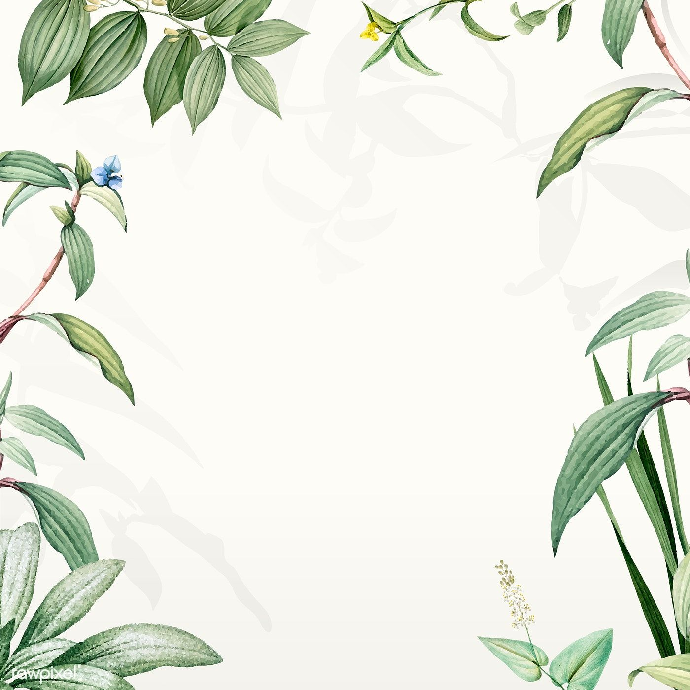Download Premium Vector Of Green Botanical Leaves Background
