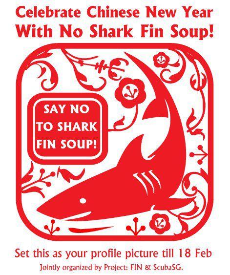 Shark Finning: The Cruelest Cuts