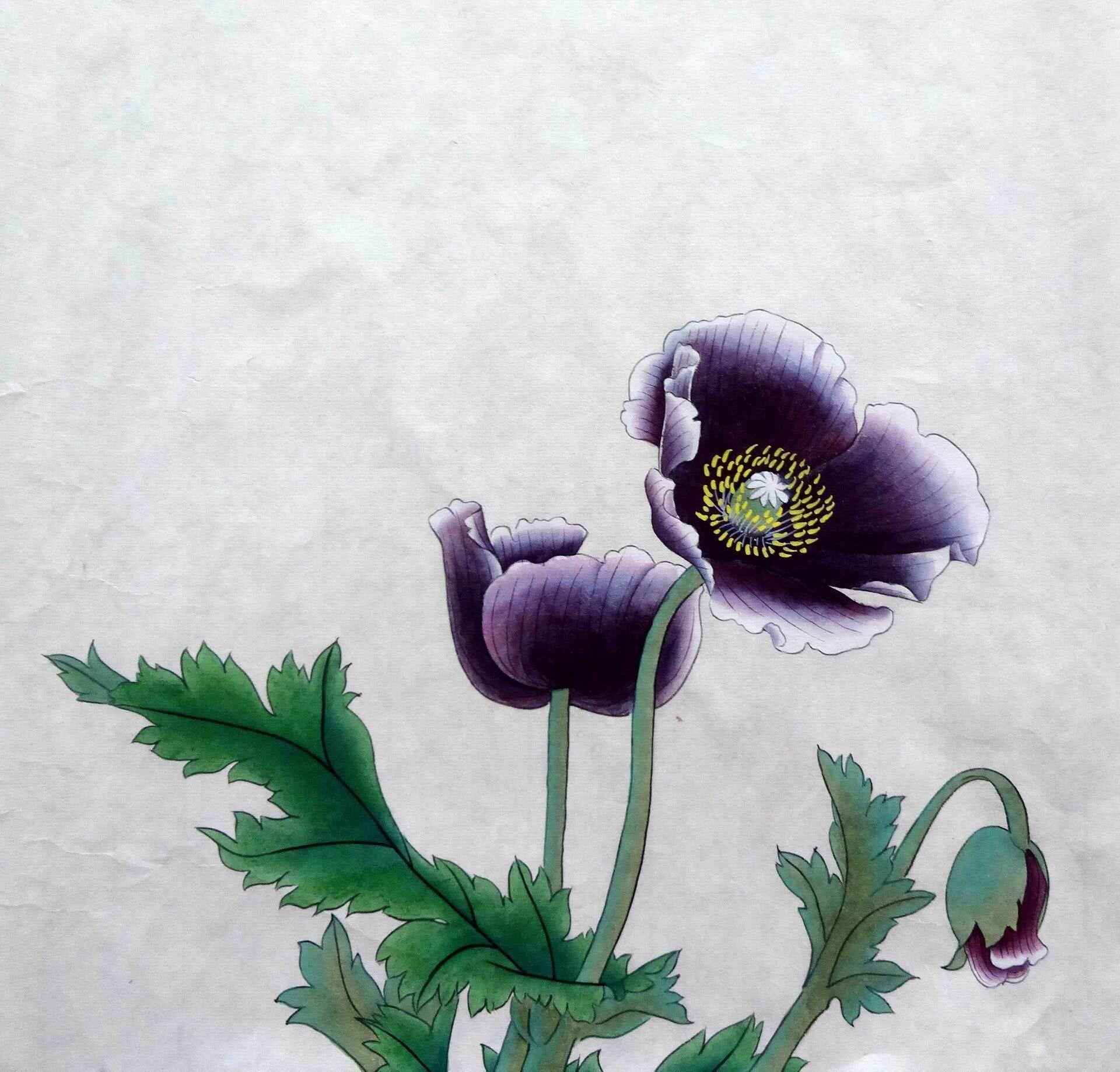 100 gongbi handpainted poppy flower painting chinese