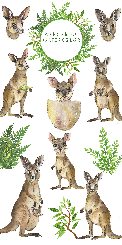 Kangaroo Watercolor Clipart Australian Animal Clipart Mom Etsy In 2021 Watercolor Clipart Baby Shower Art Animal Clipart