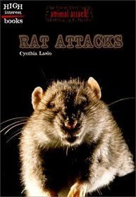 """rat Attacks On Humans 
