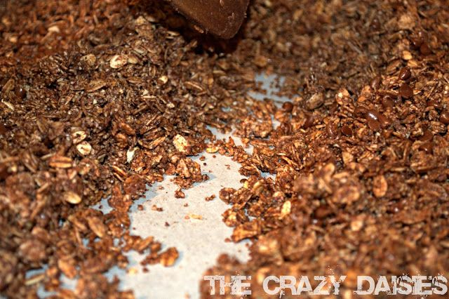 Leahs Double Chocolate Granola