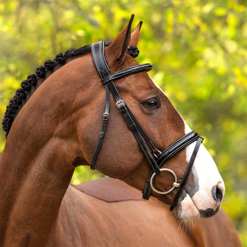 Combined noseband bridle  Morley FairField®