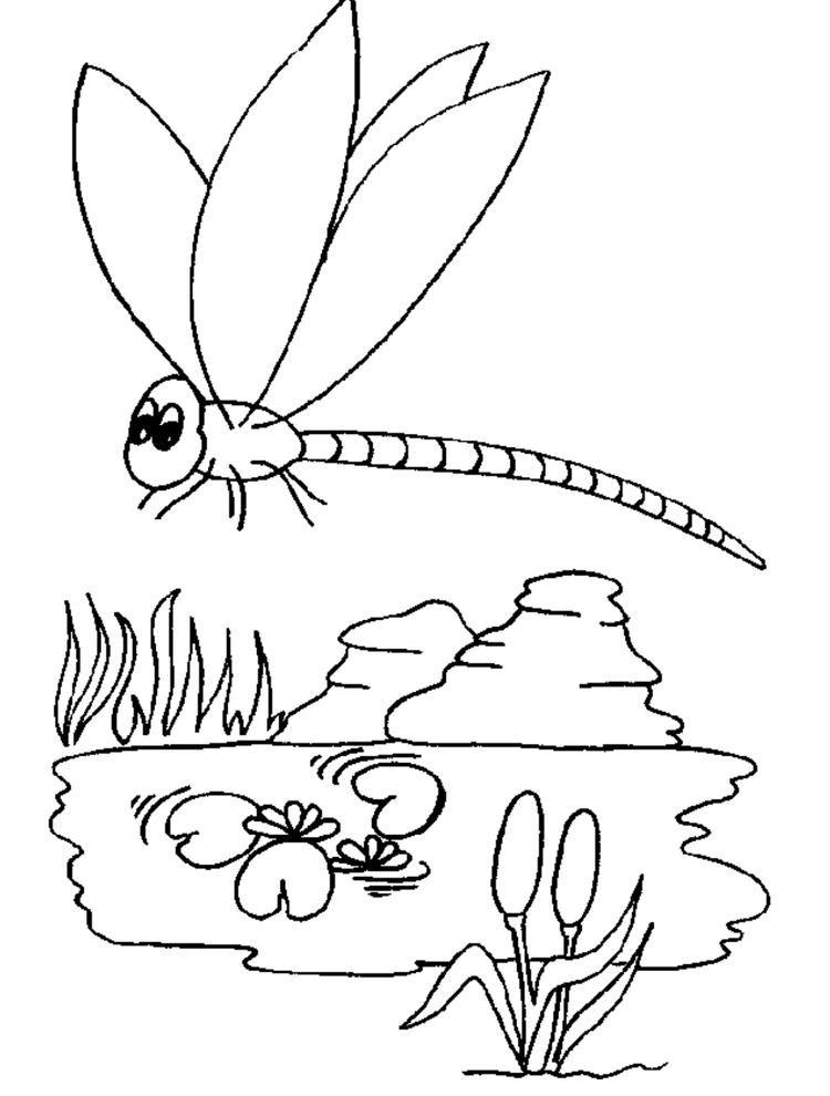 Kids Dragonfly Animal Coloring Page Animal Coloring Pages Insect Coloring Pages Shark Coloring Pages