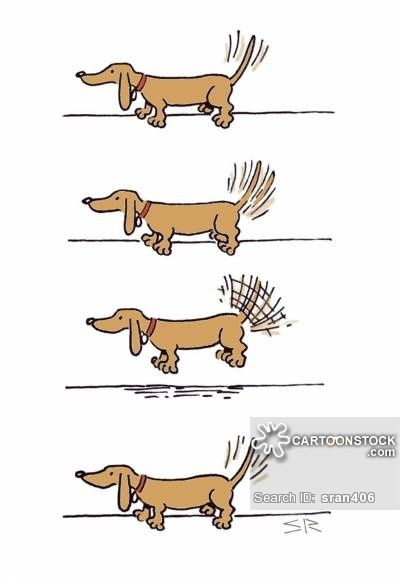 Dachshund Cartoons And Comics Funny Pictures From Cartoonstock