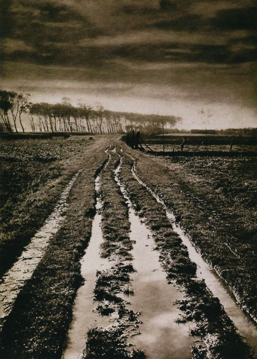 Alexandre (Albert-Édouard Drains)  Morning after the Rain  Photogravure, circa 1903  From Impressionist Camera: Pictorial Photography in Europe, 1888-1918